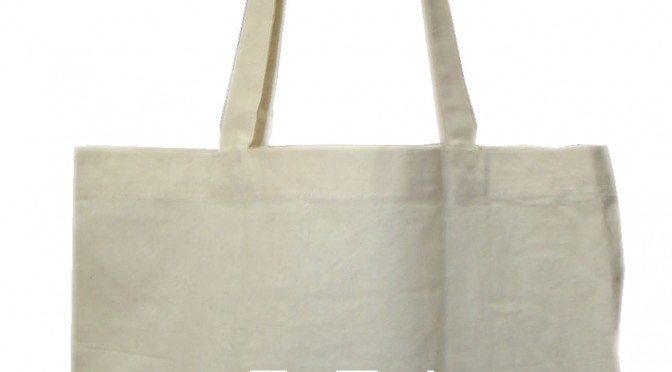 Why Canvas Fashion Bags are better than the Leather Bags?